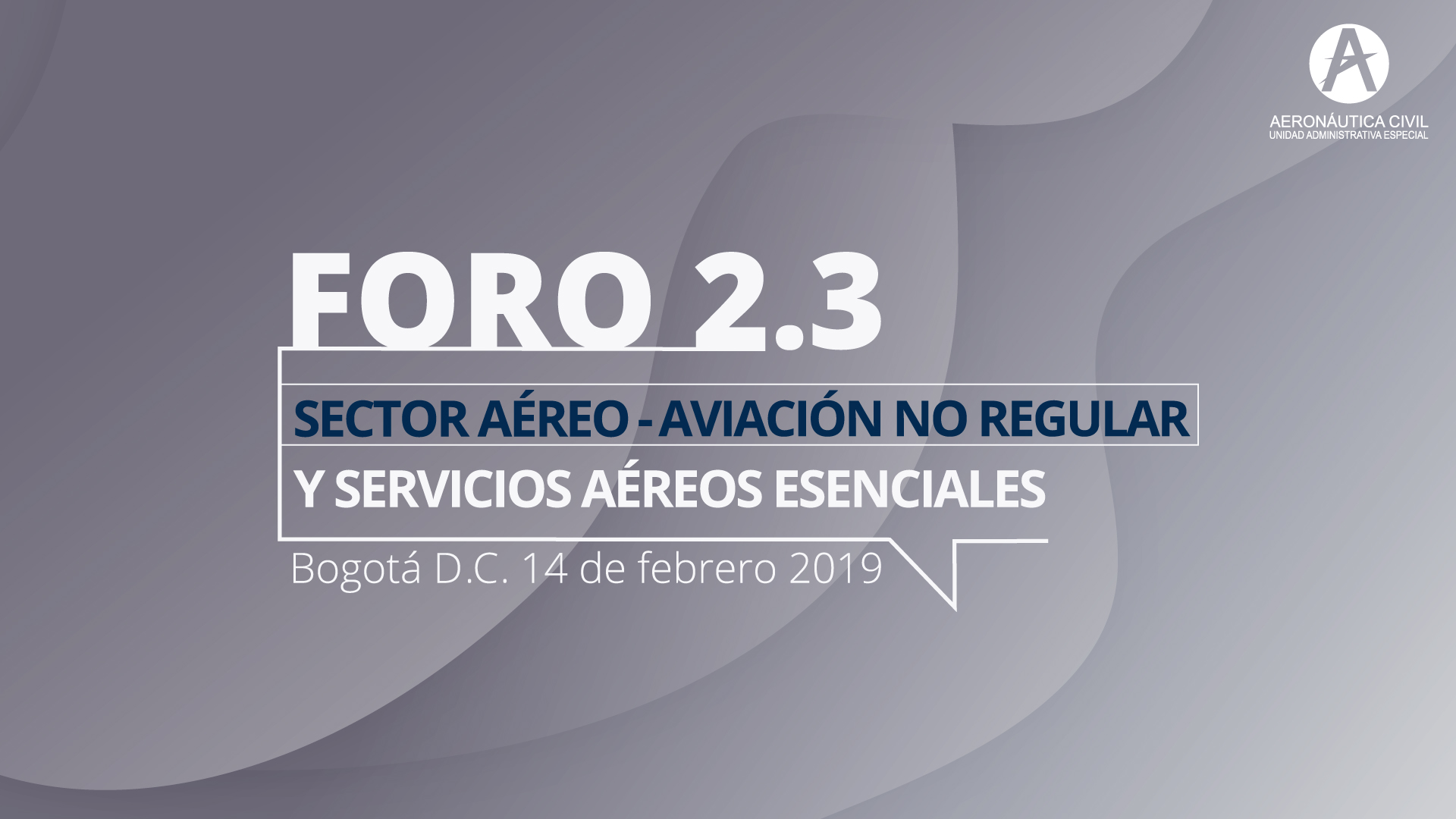 FORO-AVIACIÓN-NO-REGULAR-FINAL.jpg